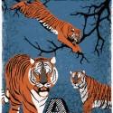 TIGERS A